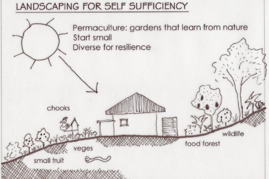 landscaping for self sufficiency
